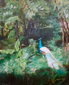 Peacock Madeira
