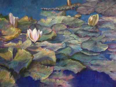 The Water Lilly Pond